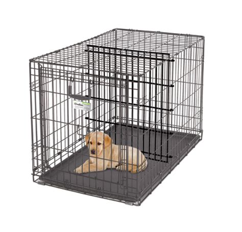 crate divider crates with divider how to make my stop biting his paws how to potty a