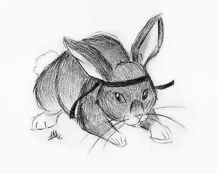 Crouching Tiger Hanging Rabbit by Crouching Tiger Bunny By Smudgeandfrank On Deviantart