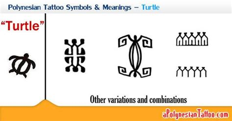 family pattern meaning polynesian tattoo symbols meanings turtle polynesian