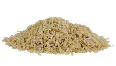 whole grains low carb diet what a low carb food pyramid would look like