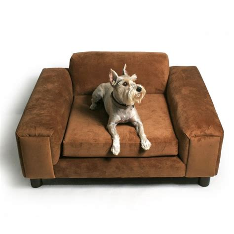 dog sofas and chairs 12 best images about mobiliario para perro on pinterest