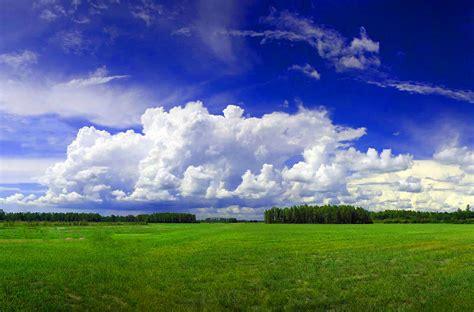 fondo pantalla prado naturaleza fondo escritorio paisaje prado verde