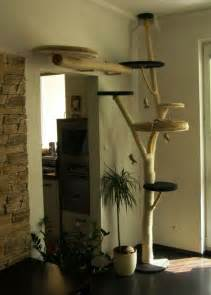 cat tree to inspire for my daughters cats cool animals pinterest cat trees trees and