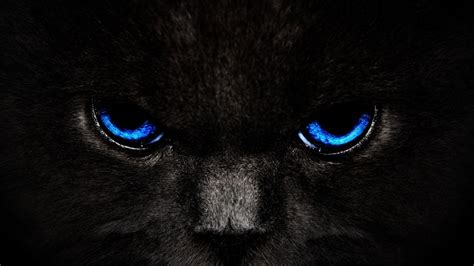 wallpaper cool black blue black and blue wallpapers wallpaper cave