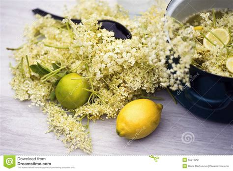 Cosmetic Preparations With Elder Flower by Solution Of Medicinal Plant And Flowers Royalty Free Stock
