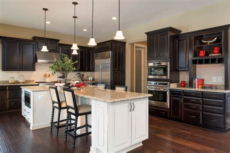 Home Designer Pro Open Doors arcadia at willowsford traditional dc metro by