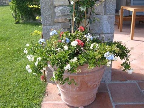 fiori in terrazza fioriere terrazzo vasi e fioriere fioriere per il terrazzo