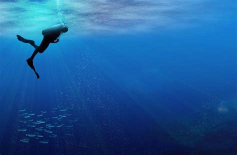 dive meaning the meaning and symbolism of the word diving