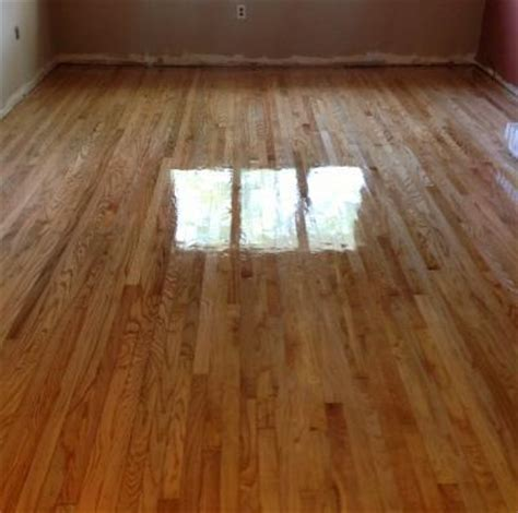 pet stains on hardwood floors pet stains in hardwood floors can they be refinished in