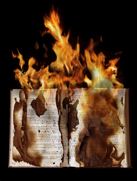 burned in books voices from the inside out wisconsin prison destroys