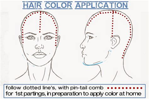 hair colour sectioning patterns how to begin sectioning hair to apply haircolor to