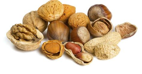 the best nuts the best nuts for a low carb diet livestrong