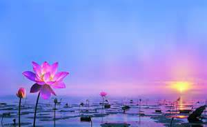 Lotus Chant Nam Myoho Renge Kyo Chant For Happiness Receiving Your