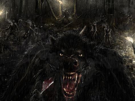 imagenes de lobos taringa fondos de pantalla viros y hombres lobo taringa