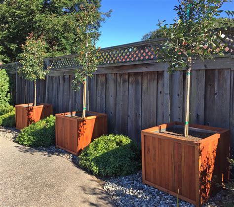 Napa Planters by The Napa Planters Built To Last Decades Forever Redwood