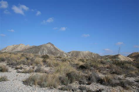 quarter  spains territory  barren land