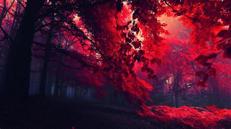 desktop wallpaper dark red dark red wallpaper hd wallpapersafari