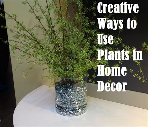 creative ways to use plants in home decor
