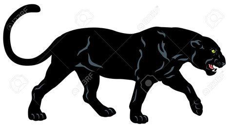 panther clip panther clipart black and white pencil and in color