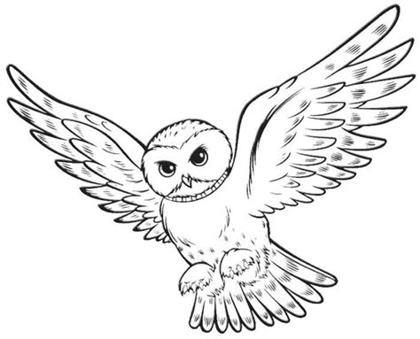 harry potter coloring book owl post owl quot harry potter quot animal coloring pages kentscraft