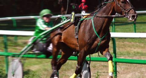 trotto seduto corse al trotto cavalli itcavalli it
