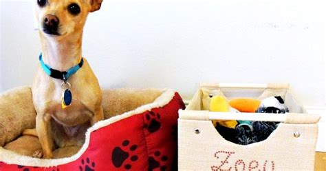 the secret life of pets craft dog house free printable secret life of pets craft crafting in the rain