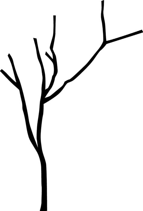 Tree Branch Outline Www Imgkid Com The Image Kid Has It Tree Branch Template