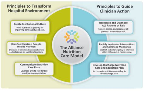 principles of athletic a guide to evidence based clinical practice alliance nutrition care model and toolkit