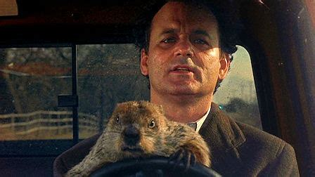 sinopsis groundhog day punxsutawney phil and bill murray hooked on houses