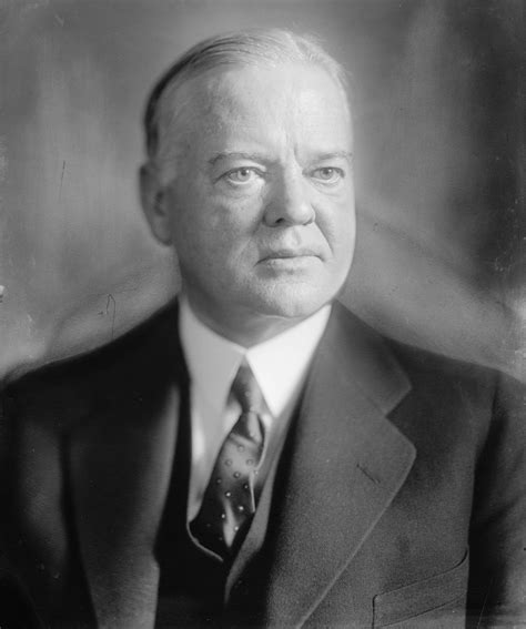 herbert the agricultural adjustment act
