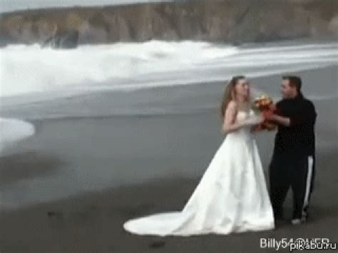 Wedding Gif by Wedding Gifs Find On Giphy