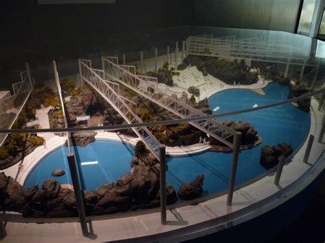 shedd aquarium oceanarium model 187 shedd aquarium gallery