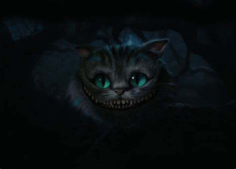 cheshire cat cheshire cat in walldevil
