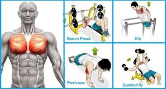 how to get my bench press up fast how to get my bench press up how to get my bench press up