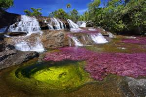 river colors kaleidoscopic ca 241 o cristales river of five colors