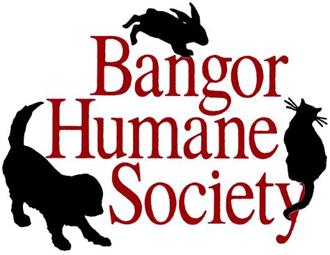 cocktails for a cause benefitting the bangor humane