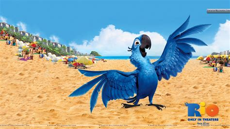 film blue bird rio wallpapers photos images in hd