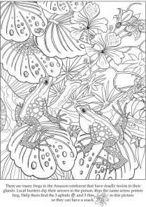 desenhos colorir adultos 40 imagens