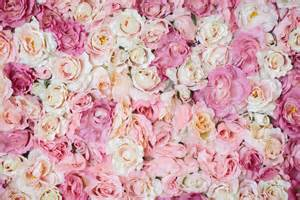 Big Wall Murals a bed of roses with white luxe she is sarah jane