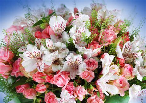mazzo di fiori bellissimo liberi sono curiosa