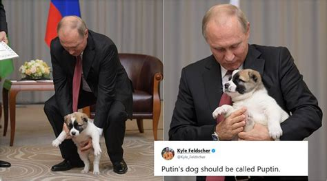 putin puppy photos of vladimir putin with puppy gifted by turkmenistan president become a