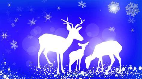 Moving Blue Deer Moving Blue deer blue winter hd desktop wallpaper widescreen high