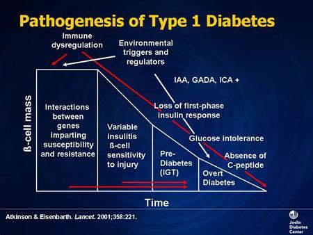Pathophysiology Of Diabetes Type 2 Essay by Insulin Therapy Of Diabetes Pathophysiology And Indications