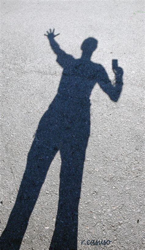 la sombra de la las enso 241 aciones del paseante solitario la sombra del paseante