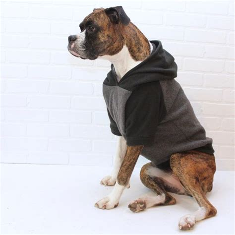 puppy sweatshirt 25 best ideas about sweaters on clothes pet clothes and puppy
