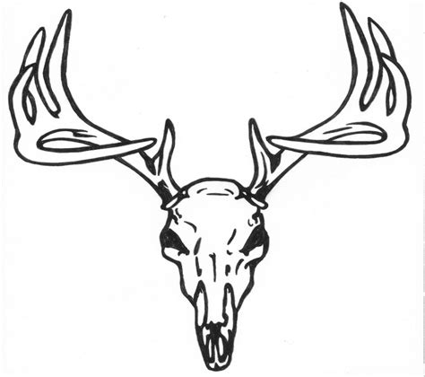 simple deer download pictures to pin on pinterest tattooskid