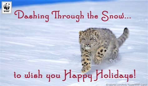 send holiday ecards  christmas hanukkah  kwanzaa world wildlife fund