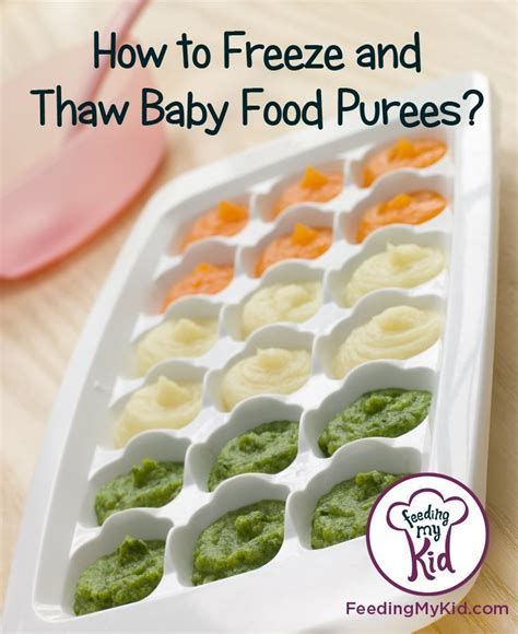 Nuby Garden Fresh Food Baby Press 63 fresh baby food storage best storage design 2017