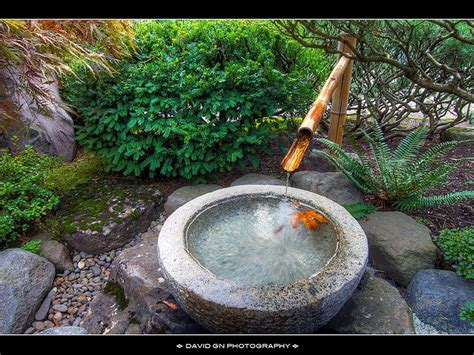 17 best ideas about bamboo fountain on pinterest bamboo
