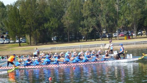 dragon boat nowra dragon boats to grace the nowra shores this weekend
